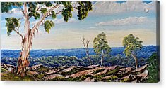 Over The Hill Acrylic Print by David Belcastro