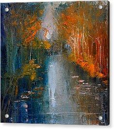 Over The Lake IIi Acrylic Print by David Figielek
