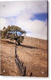 Over The Line Acrylic Print