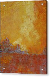 Over Time Acrylic Print by Barrett Edwards