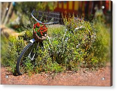 Overgrown Bicycle With Flowers Acrylic Print by Mike McGlothlen