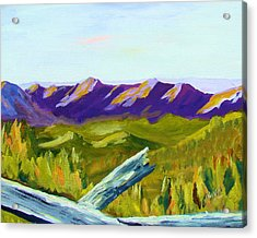 Overlook Acrylic Print by Joe Byrd