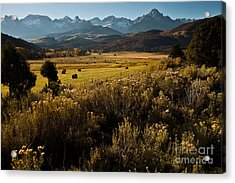 Overlook To Mt. Sneffles Acrylic Print by Steven Reed