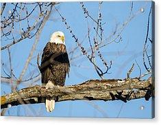 Overlooking Freedom Acrylic Print