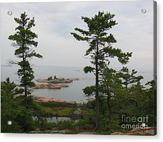 Acrylic Print featuring the photograph Overlooking Georgian Bay by Nina Silver