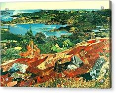 Overlooking The Bay Acrylic Print by Robin Birrell