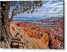 Overlooking The Hoodoos Acrylic Print by Christopher Holmes