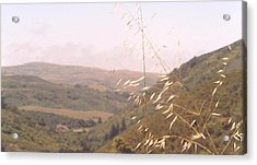 Overlooking The Valley Acrylic Print