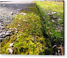 Overtaking Acrylic Print by Greg Simmons