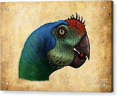 Oviraptor Head Detail Acrylic Print by Alvaro Rozalen