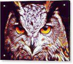 Acrylic Print featuring the digital art Owl - Fractal by Lilia D