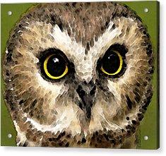 Owl Art - Night Vision Acrylic Print by Sharon Cummings