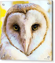 Owl Art - Soft Love Acrylic Print by Sharon Cummings