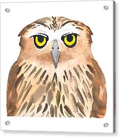 Owl Bird. Watercolor, Vector Acrylic Print