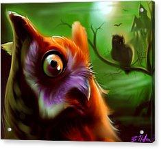 Owl Acrylic Print by Brandon Heffron