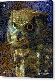 Owl Acrylic Print