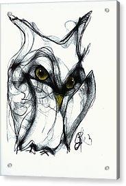 Owl Eyes  Acrylic Print