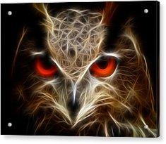 Owl - Fractal Artwork Acrylic Print