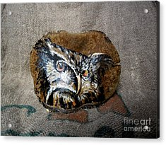 Owl Acrylic Print by Ildiko Decsei