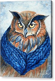 Owl In A Cowl Acrylic Print by Janine Riley