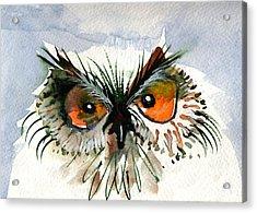 Owlitude Acrylic Print