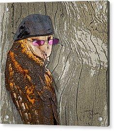 Owltitude Acrylic Print