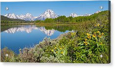 Acrylic Print featuring the photograph Oxbow Bend Wildflowers In Spring by Aaron Spong