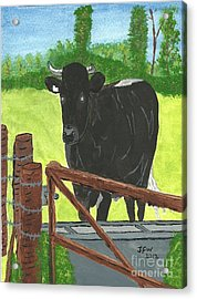 Acrylic Print featuring the painting Oxleaze Bull by John Williams