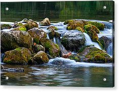 Ozark Waterfall Acrylic Print by Steve Stuller
