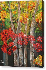 Ozark Woods Acrylic Print