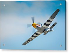 P-51 Mustang Low Pass Acrylic Print by Puget  Exposure