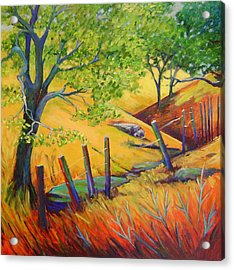 Pacheco Oak Valley Acrylic Print by Stephanie  Maclean