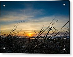 Pacific Coast Sunset Acrylic Print by Puget  Exposure