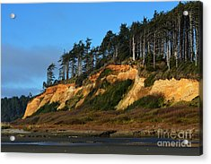 Pacific Coastline Acrylic Print by Gayle Swigart