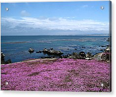 Acrylic Print featuring the photograph Pacific Grove California by Joyce Dickens