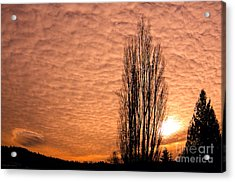 Pacific Northwest Winter's Sky Acrylic Print