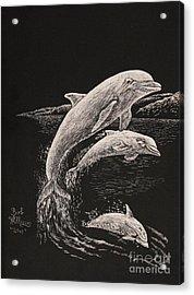 Pacific Ocean Acrobats  Acrylic Print