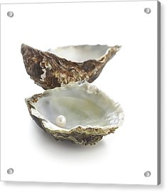 Pacific Oyster Shell And Pearl Acrylic Print by Science Photo Library