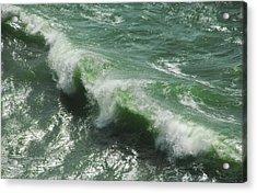 Pacific Rim Acrylic Print