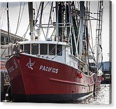 Acrylic Print featuring the photograph Pacifics by Gregg Southard