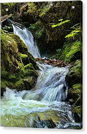 Packer Falls Vert 1 Acrylic Print