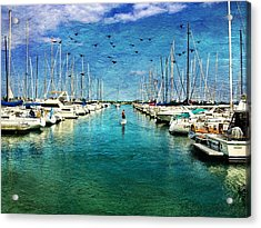 Paddle Boarder  In The Harbor Acrylic Print by Eleanor Abramson