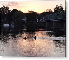 Paddling For Home Acrylic Print