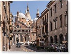 Padua. Italy Acrylic Print by Rostislav Bychkov