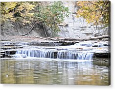 Paine Creek Acrylic Print
