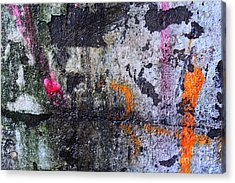 Paint And Rust 31 Acrylic Print by Jim Wright
