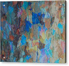 Painted Bark Acrylic Print by Stephanie Grant