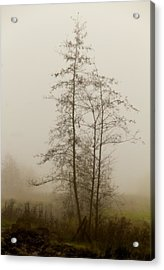 Painted By Weather Acrylic Print by Odd Jeppesen