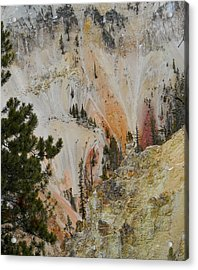 Acrylic Print featuring the photograph Painted Canyon At Lower Falls by Michele Myers