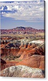 Painted Desert Portrait Acrylic Print by Douglas Taylor